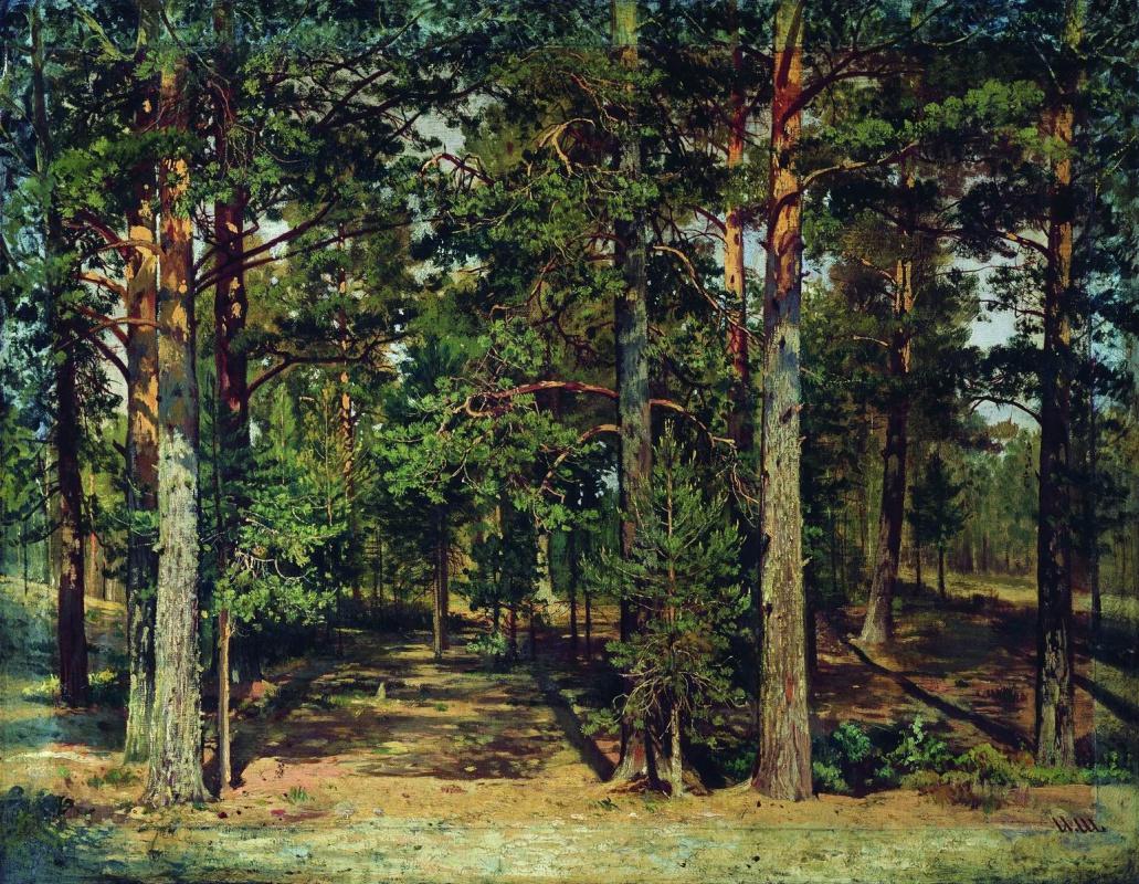 Ivan Shishkin. Pine forest