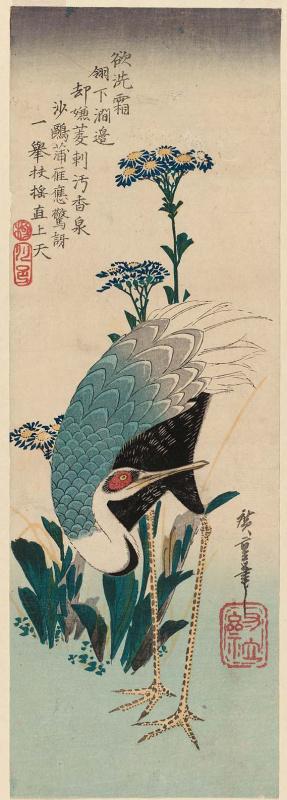 """Утагава Хиросигэ. Белый журавль и астры. Серия """"Птицы и цветы"""""""
