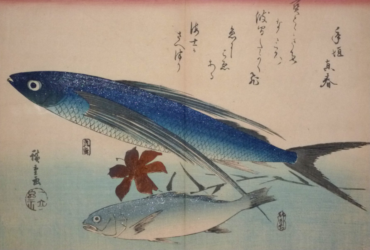 """Utagawa Hiroshige. Japanese flying fish, white Croaker and Lily flower. A Series Of """"Fish"""""""
