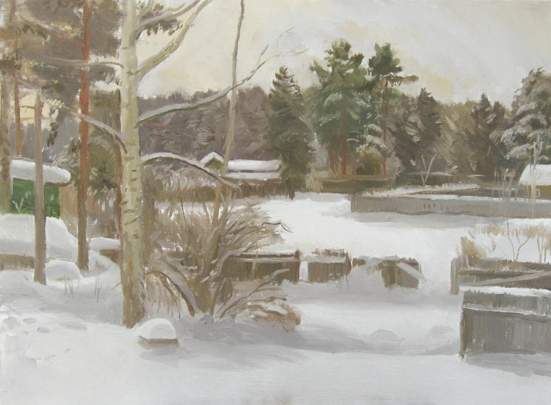 Igor Vladimirovich Mashin. Winter