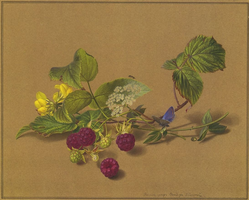 Fedor Petrovich Tolstoy. Branch of raspberry, butterfly, and ant