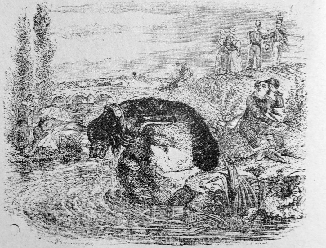 Жан Иньяс Изидор (Жерар) Гранвиль. Собака и ее отражение. Иллюстрации к басням Жана де Лафонтена