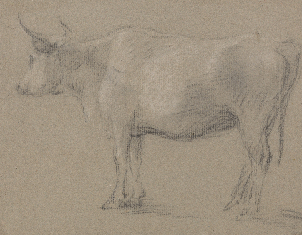 Thomas Gainsborough. Sketch cow