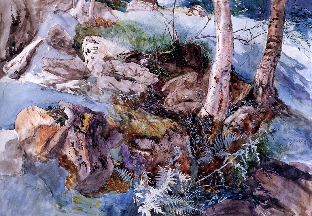 John Ruskin. Study of rocks and ferns