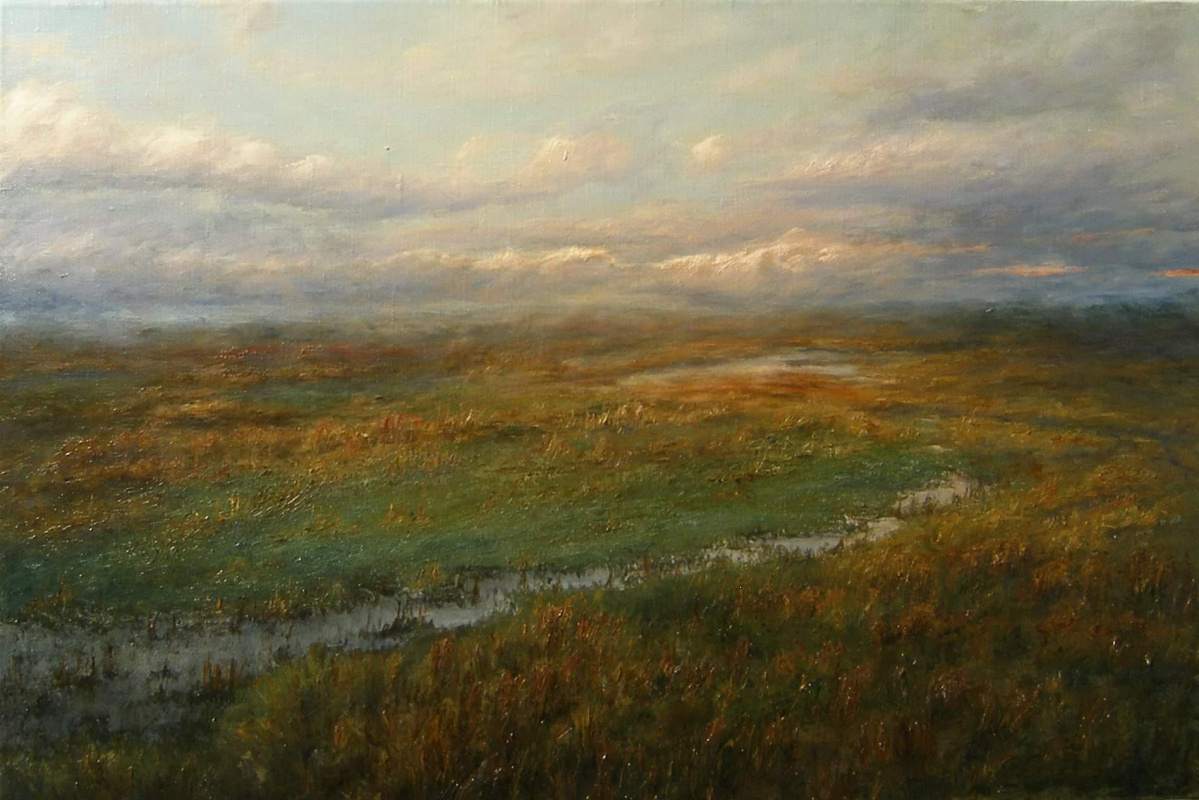 Burtseva Victoria. Evening meadow after rain