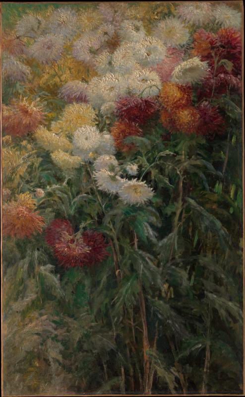 Gustave Caillebotte. Chrysanthemum. The garden in Petit-Gennevilliers