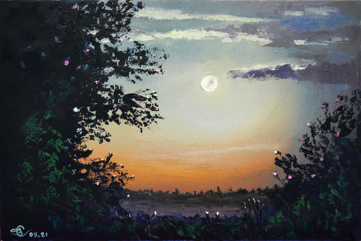 Vadim Anatolyevich Stolyarov. Enchanting moon