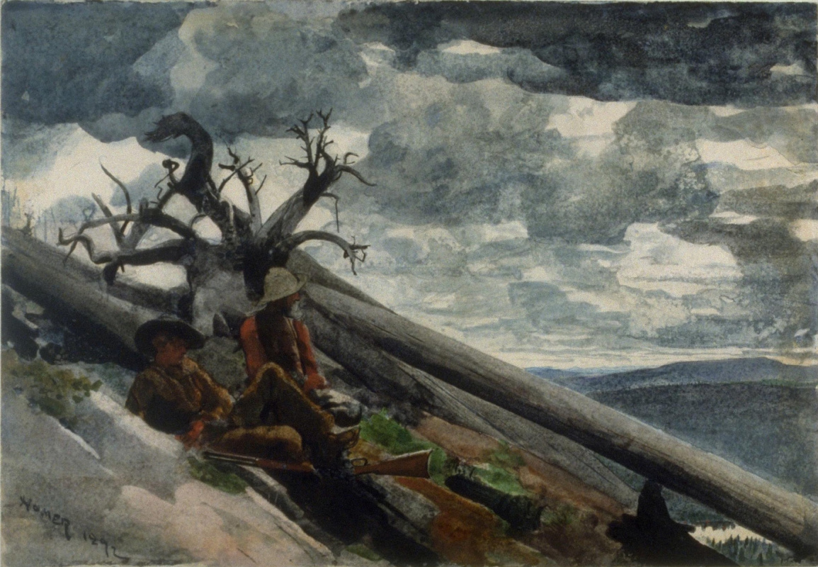 Winslow Homer. Burnt mountain