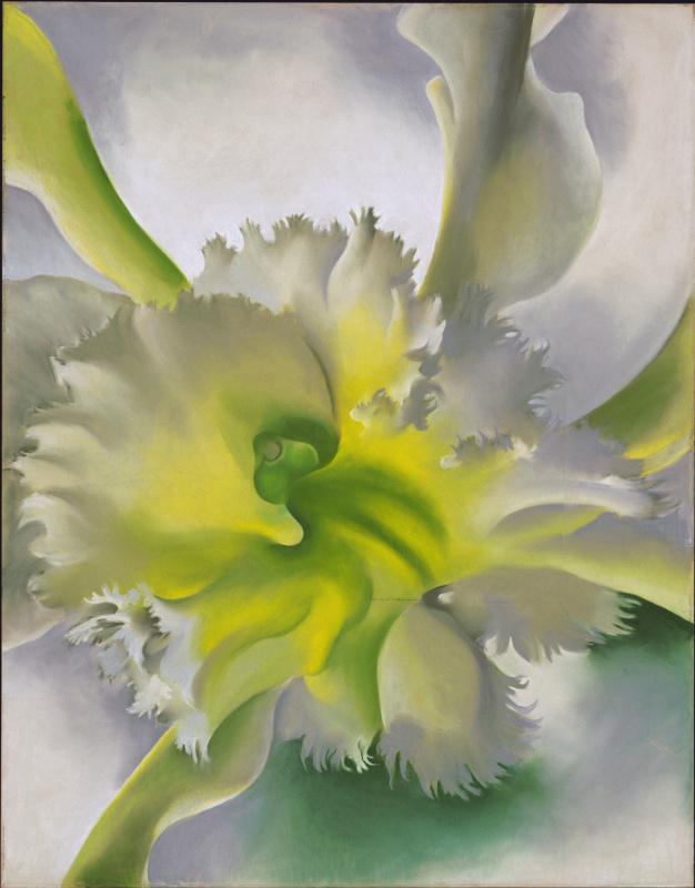 Georgia O'Keeffe. Orchids