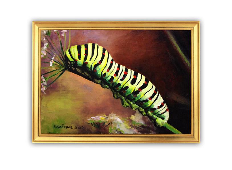 Kati Keberle. Butterfly