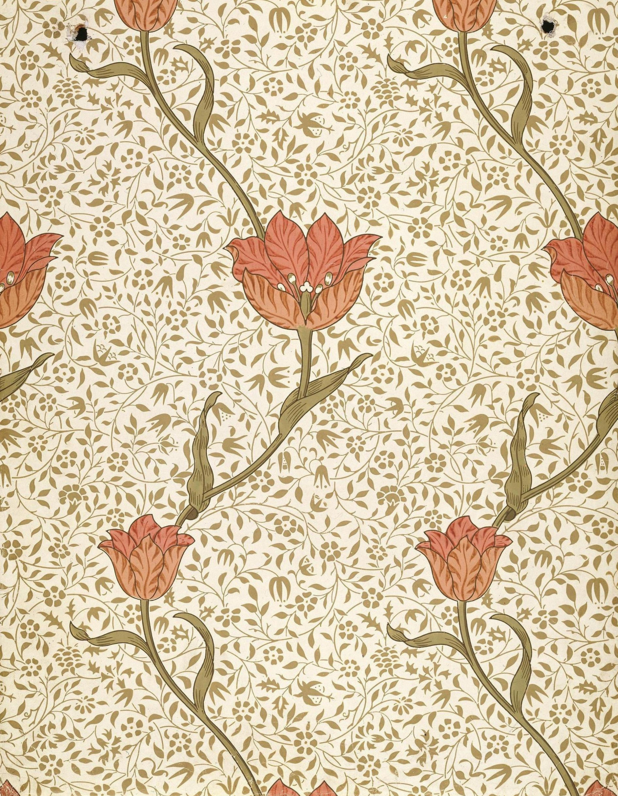 William Morris.  Jardin des tulipes
