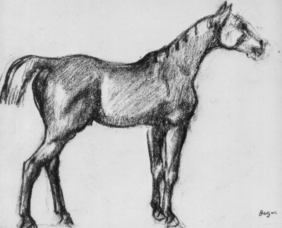 Эдгар Дега. Стоящая лошадь в профиль