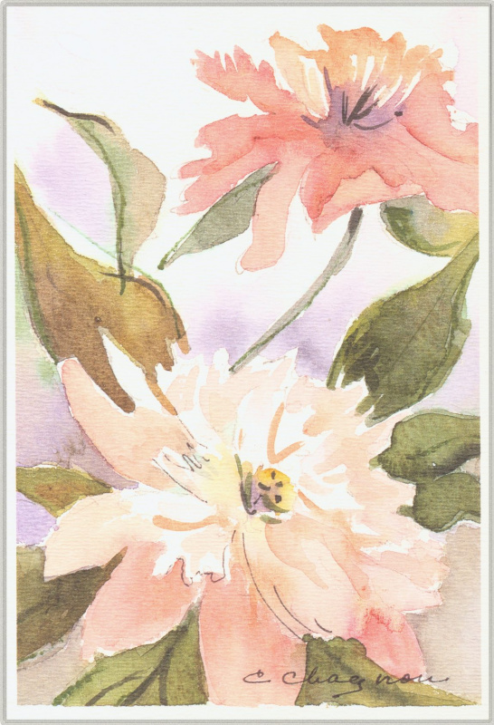 Клин Чагнон. Розовые цветы