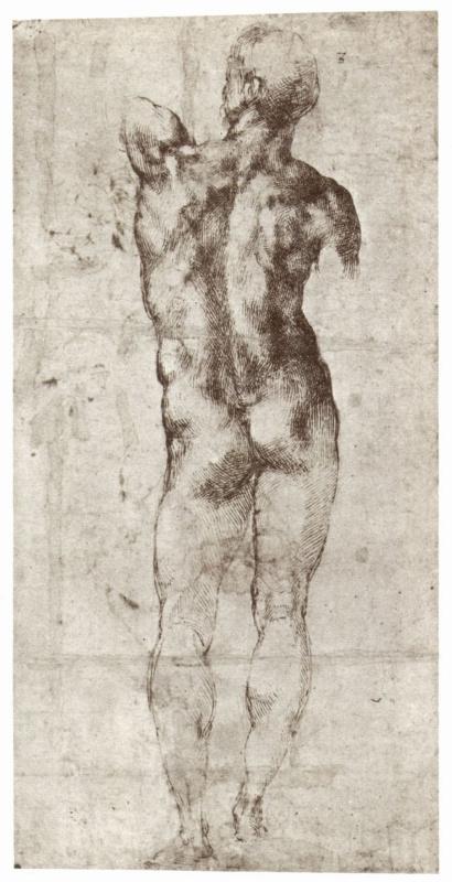 Микеланджело Буонарроти. Стоящий обнаженный, вид со спины