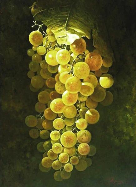 Higuera Jose. Grapes