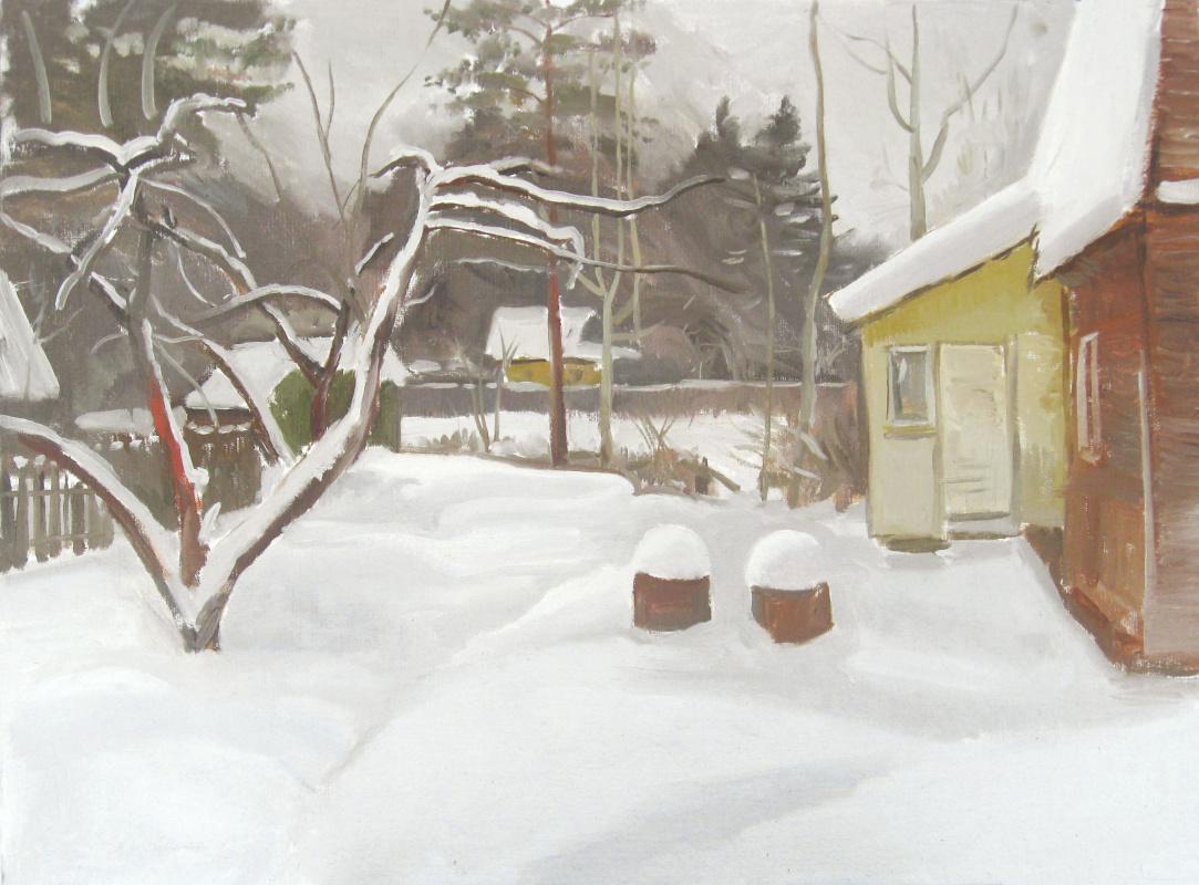 Igor Vladimirovich Mashin. Cottage in the winter
