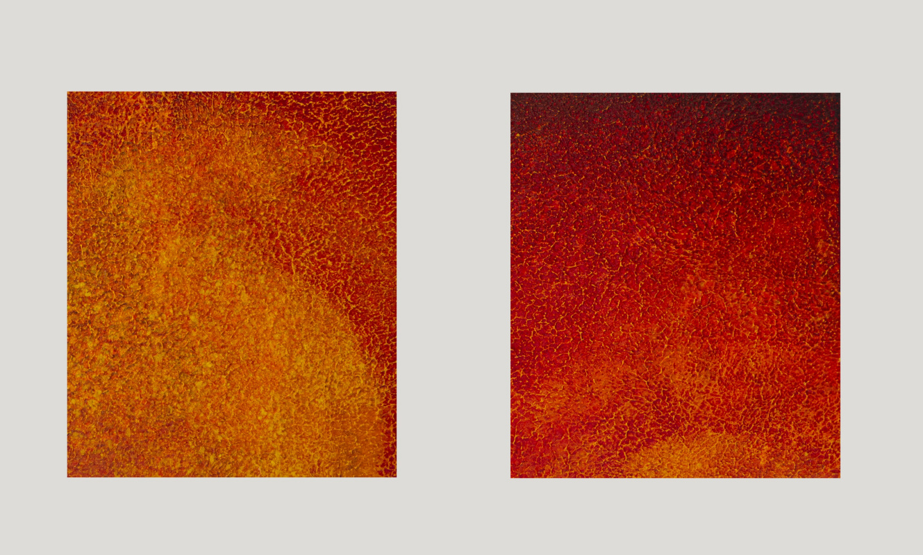Red Yellow Salience Landscape