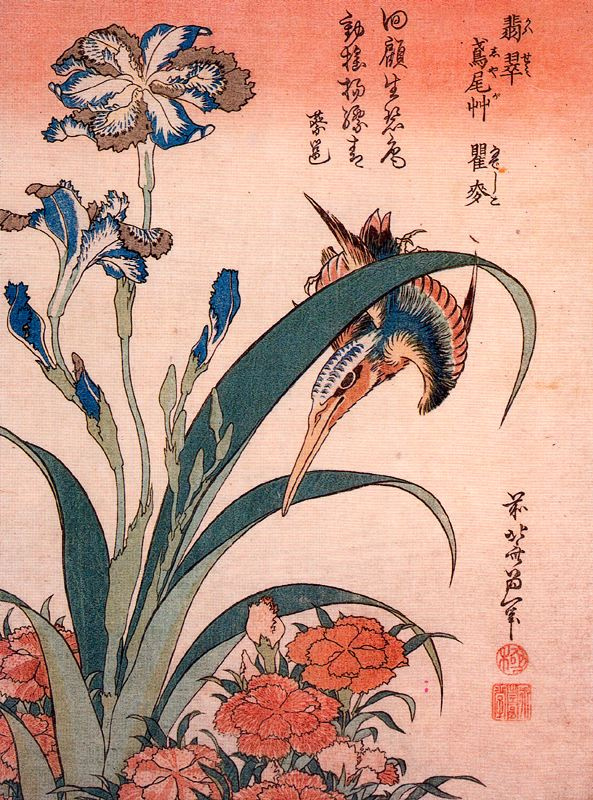 Кацусика Хокусай. Ирисы и птица