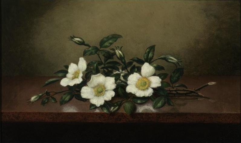 Martin Johnson Head. Cherokee Roses on the Table