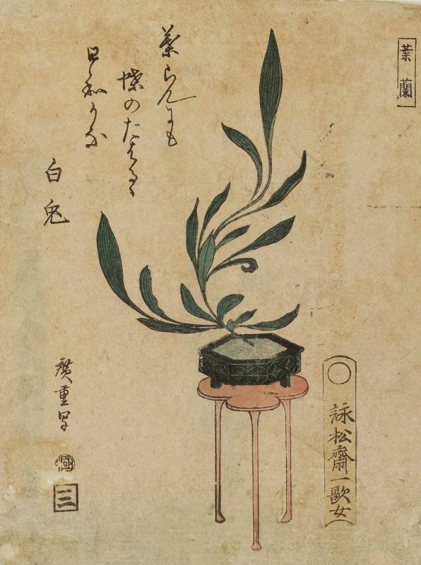 Утагава Хиросигэ. Орхидея на столике