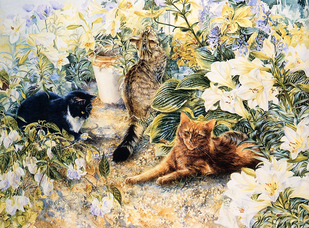 Leslie Fotherby. Cats