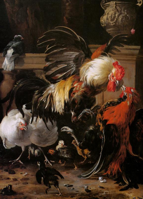 Melchior de Hondecuiter. Fighting cocks