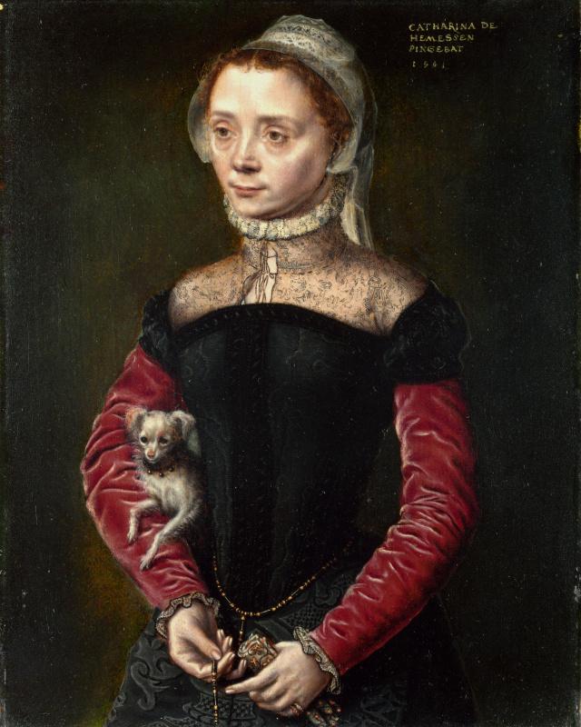 Катарина ван Хемессен. Портрет дамы с собачкой