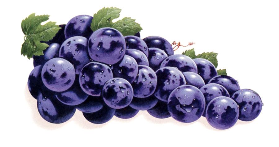Анимашки картинки винограда