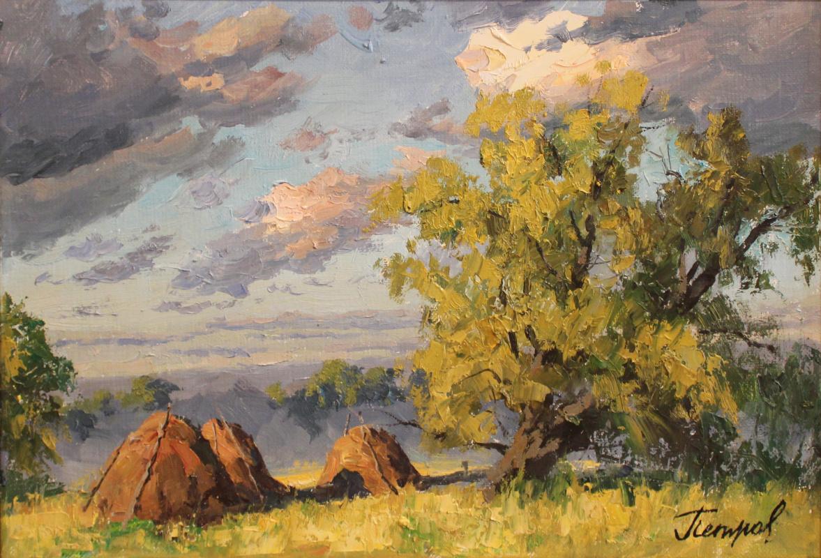 Yury Yakovlevich Petrov. Trans-Volga