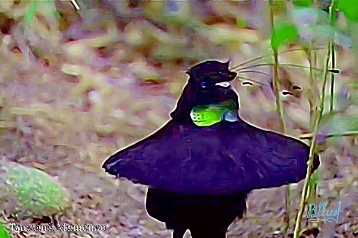 Vasiliy Mishchenko. Birds 018