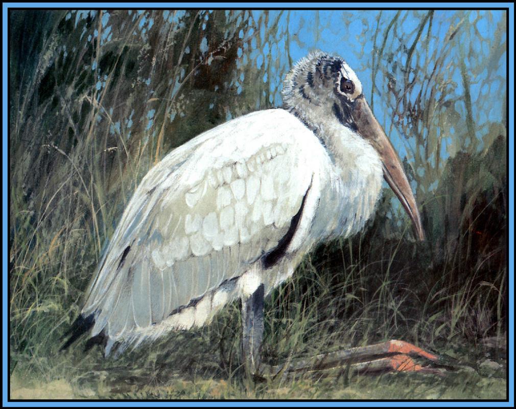 Roger Bansemer. Stork