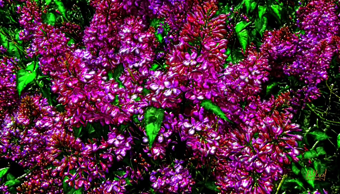 Vasiliy Mishchenko. Flowers 021