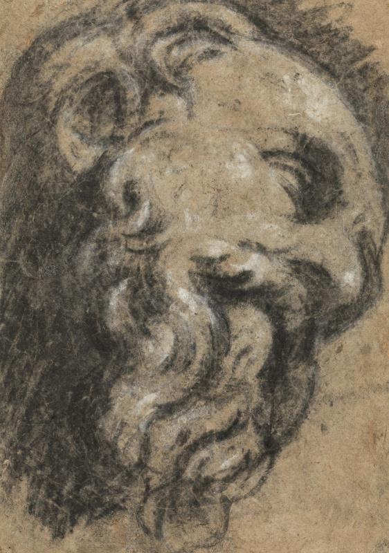 Study after Michelangelo. Saint Damian