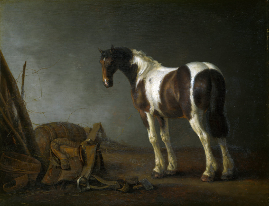 Абрахам ван Калрает. Лошадь с седлом рядом