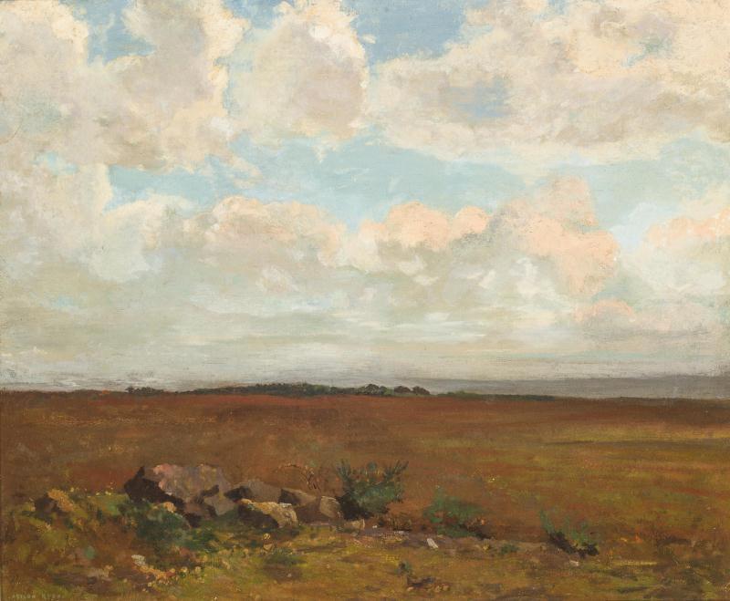 Odilon Redon. Landscape around Payplebad