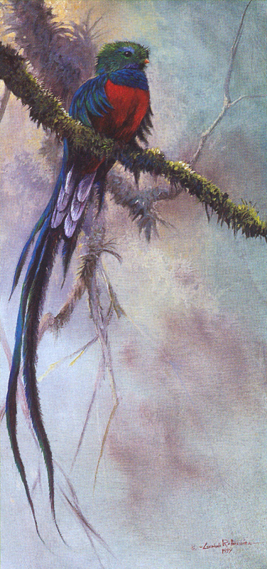 Гамини Ратнавира. Изумрудный лес