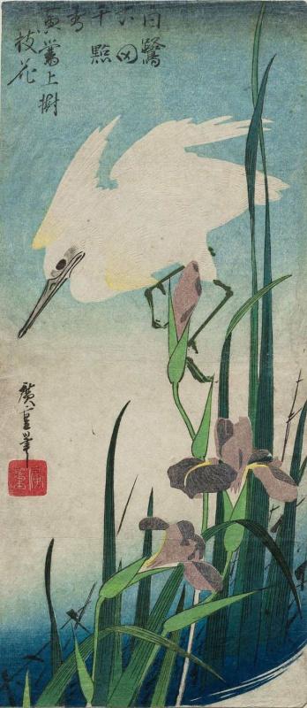 "Utagawa Hiroshige. White Heron and irises. Series ""Birds and flowers"""