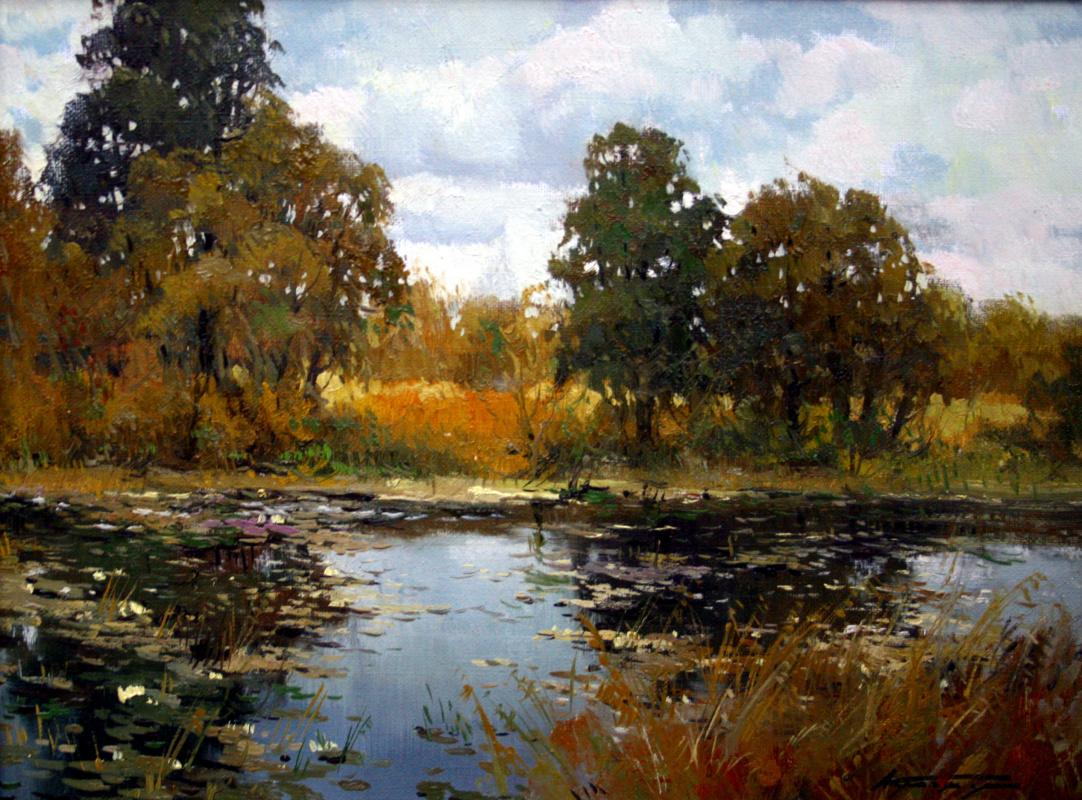 Alexander Markovich Kremer. Pond