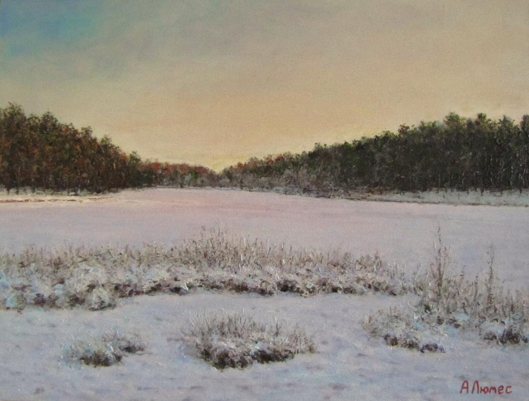 Andrew Lumez. Lake in winter