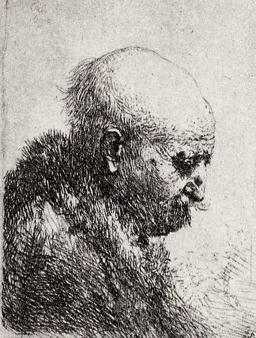 Рембрандт Ван Рейн. Лысый старик в профиль вправо