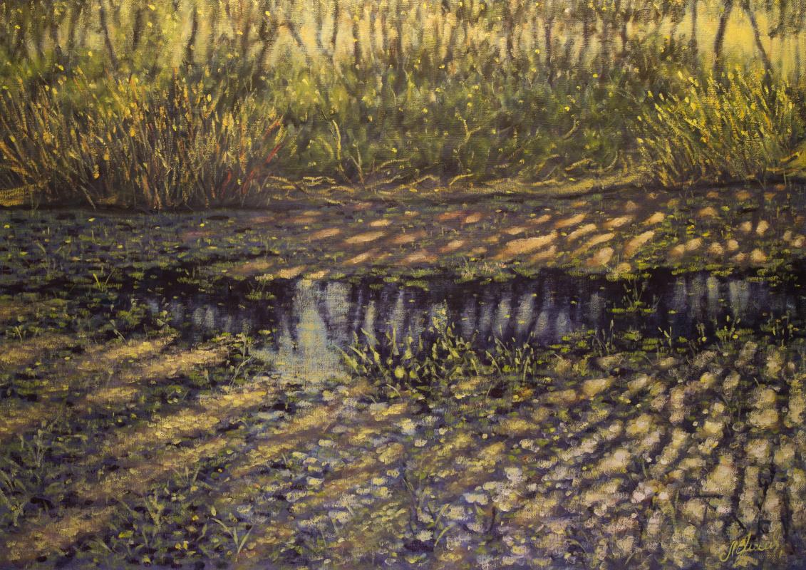Valery Levchenko. No. 409 Lake Invisible