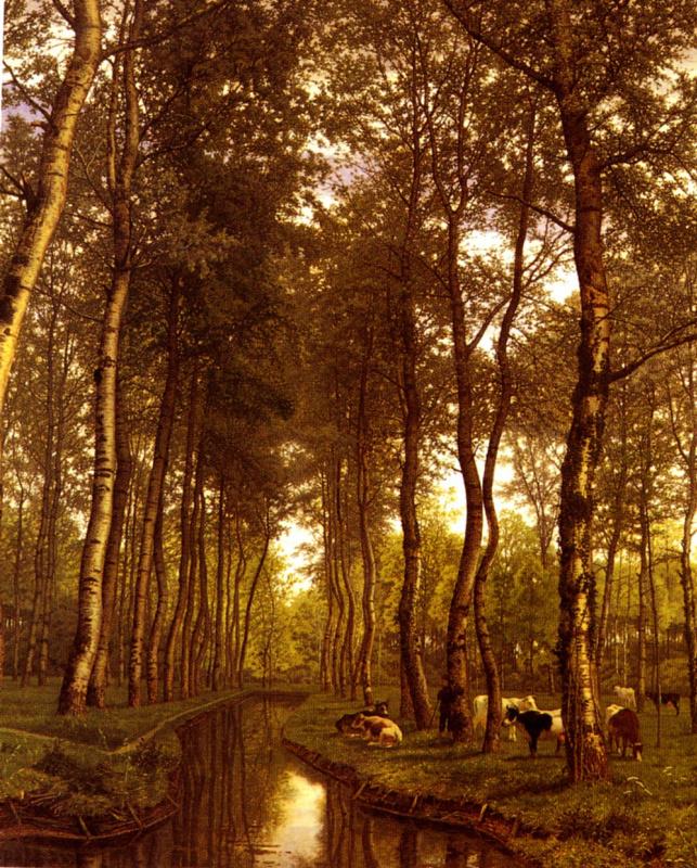 Деревья у канала