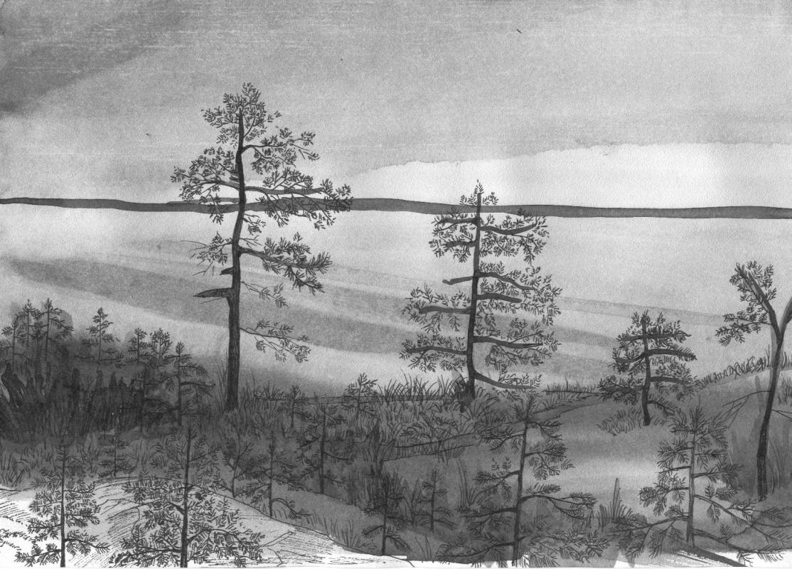 Marina Bocharova. Pines on the lake