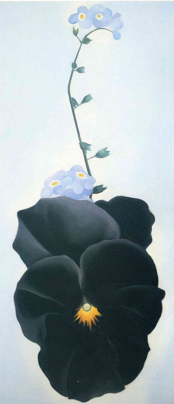 Georgia O'Keeffe. Black Pansy and forget-me-nots