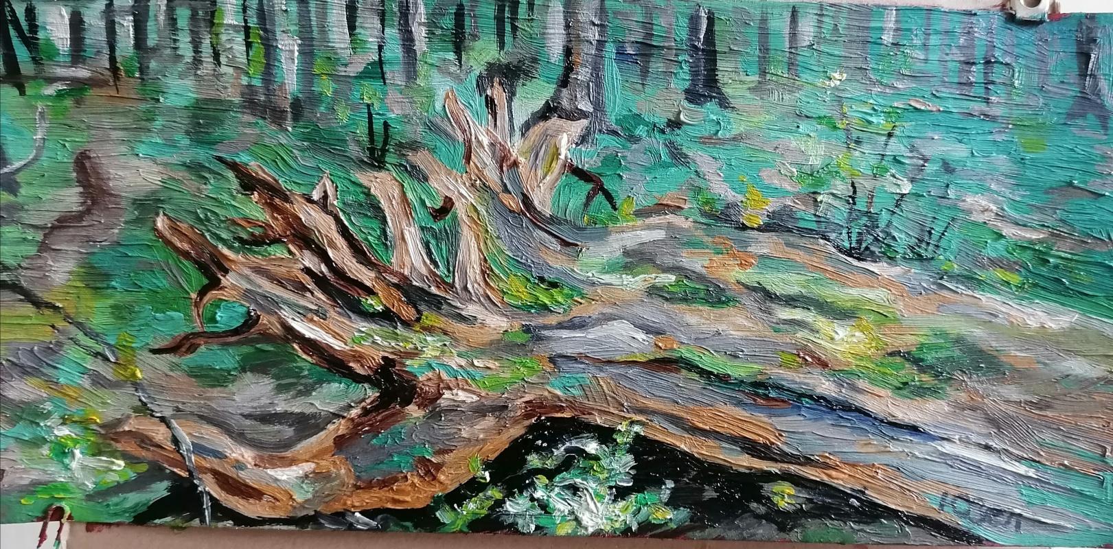 Julia Sergeevna Zelenskaya. Forest log