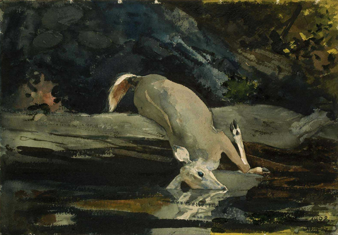 Winslow Homer. The fallen deer