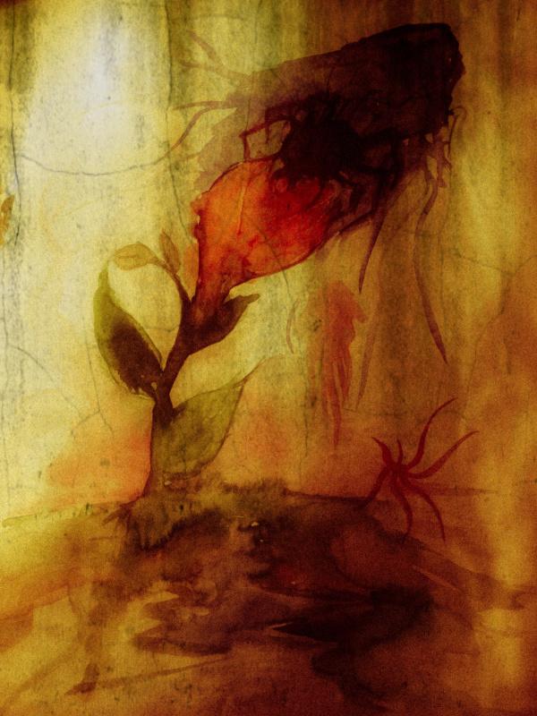 Tristan Reveur. Les fleur du mal