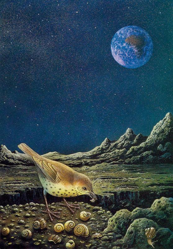 Дэнни Флинн. На луне