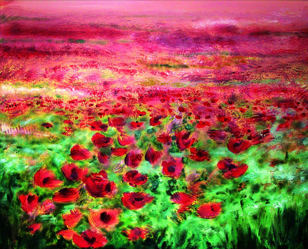 Robert Hettich. Poppy field