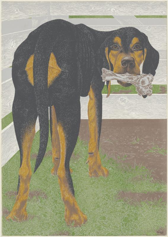 Алекс Колвилл. Собака с костью